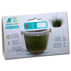 Easy Grow - Eleocharis parvula (zselés növény - 3)