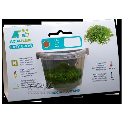 Easy Grow - Riccia fluitans (zselés növény - 9)