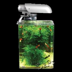 image: Aquatic Nature Aquarium COCOON 1 (10 L) 20 x 20 x 25 cm