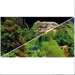 image: HOBBY Poszter növényes 2/7 60cm, 1m