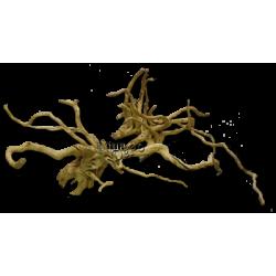 image: aquaDePo Finger gyökér (20-55 cm) / kg (Spiderwood, Red moor)