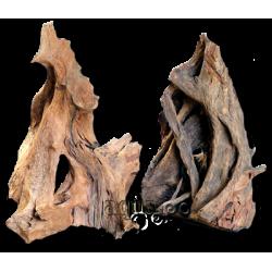 image: aquaDePo Mangrowe Large /db